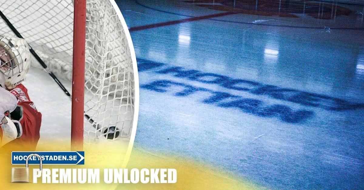 SKOGLUND: Hockeyettans bästa forwardssidor