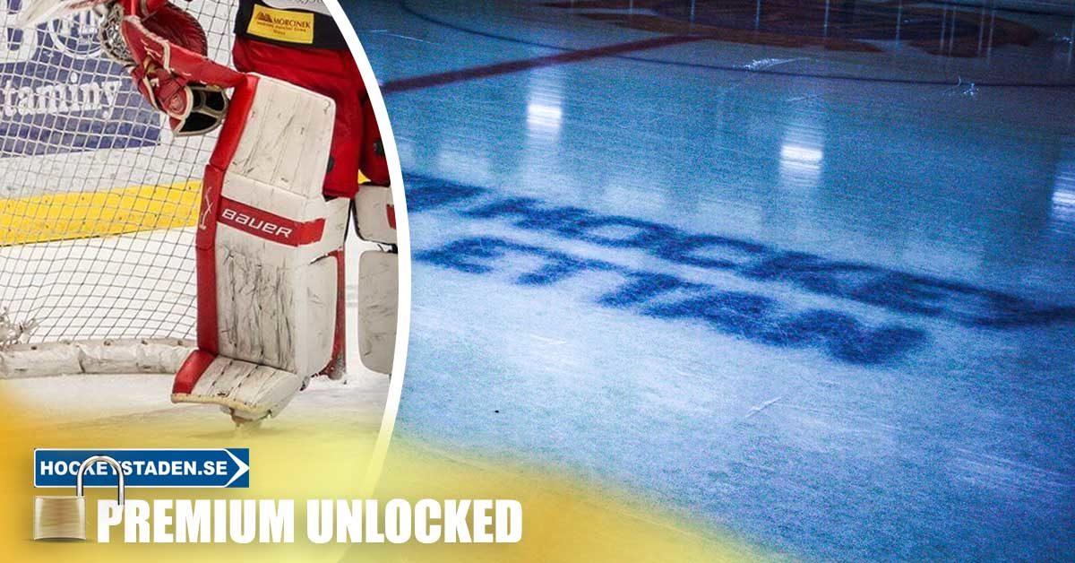 SKOGLUND: Hockeyettans bästa målvaktspar